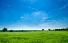 De ce este cerul albastru?