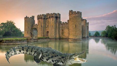 Au existat vreodată castele înconjurate de apă în care se află crocodili înfometați?