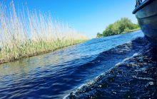 Cum arată locul de unde izvorăște Dunărea?