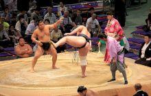 De ce luptătorii de sumo sunt așa grași?