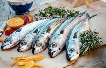 Care sunt peștii fără oase? Pești cu puține oase, buni de mâncat
