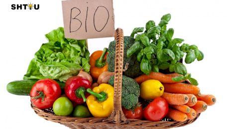 Bio. Ce sunt produsele Bio?