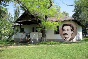 E adevărat că Mihai Eminescu NU s-a născut la Ipotești?
