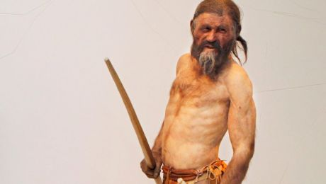 Ce mâncau oamenii acum 5.000 de ani? Ce s-a găsit în stomacul lui Ötzi, Omul Ghețurilor?
