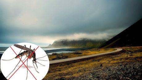 Care este singura țară unde nu există țânțari?