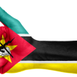 Care este singurul steag care are o armă modernă și o sapă pe el?