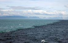 Cum arată locul unde se întâlnesc apele Mării Baltice și Mării Nordice?