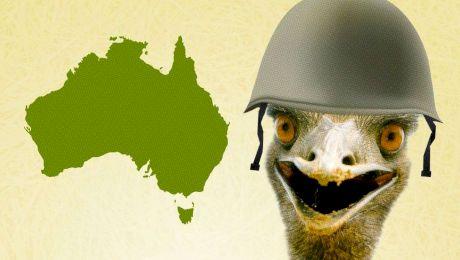 E adevărat că armata australiană a pierdut un război cu păsările Emu?