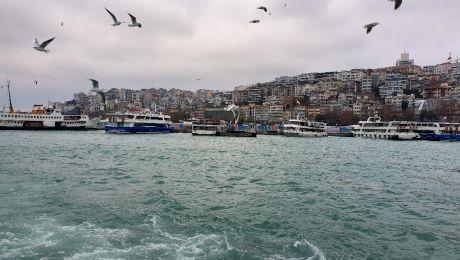 De ce Turcia se numește Turkey în engleză și care este legătura cu curcanul?