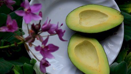 Ce este avocado? Ce gust are?