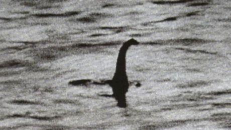 Este adevărată fotografia monstrului din Loch Ness? Care este povestea imaginii?