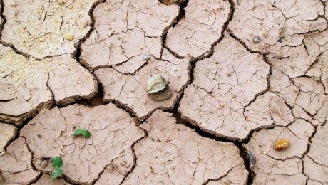 Care este singurul loc uscat de pe Pământ unde nu există pământ?