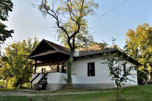 Cum era casa din Ipotești unde a copilărit Mihai Eminescu? Câte camere avea și ce era fascinant la locuință?
