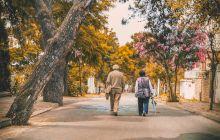 Ce este pensia specială? Cum se calculează?