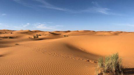 Cum arăta deșertul Sahara în urmă cu 10.000 de ani?