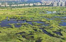 Care e povestea Parcului Natural Văcărești? Ce planuri aveau comuniștii cu zona?