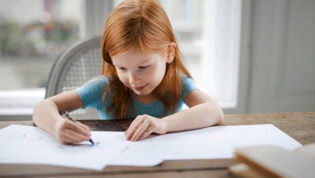 Ce este verbul și de câte feluri este? La ce întrebări răspunde verbul?