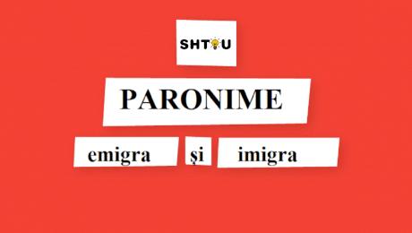 Ce sunt paronimele? De câte feluri sunt paronimele?