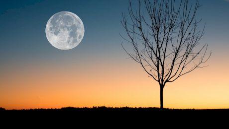 Ce este fenomenul de Lună plină? Ce se întâmplă când este Lună plină?