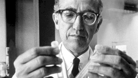 Cum a apărut vaccinul împotriva poliomielitei, invenția lui Jonas Salk?