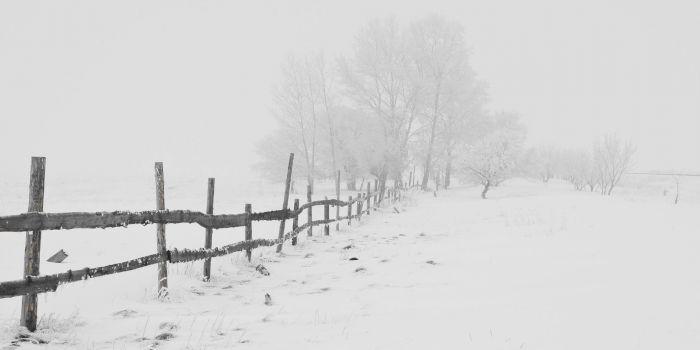 """Care a fost cea mai grea iarnă din istoria Bucureștiului? Care e povestea """"iernii lui Hangerliu""""?"""
