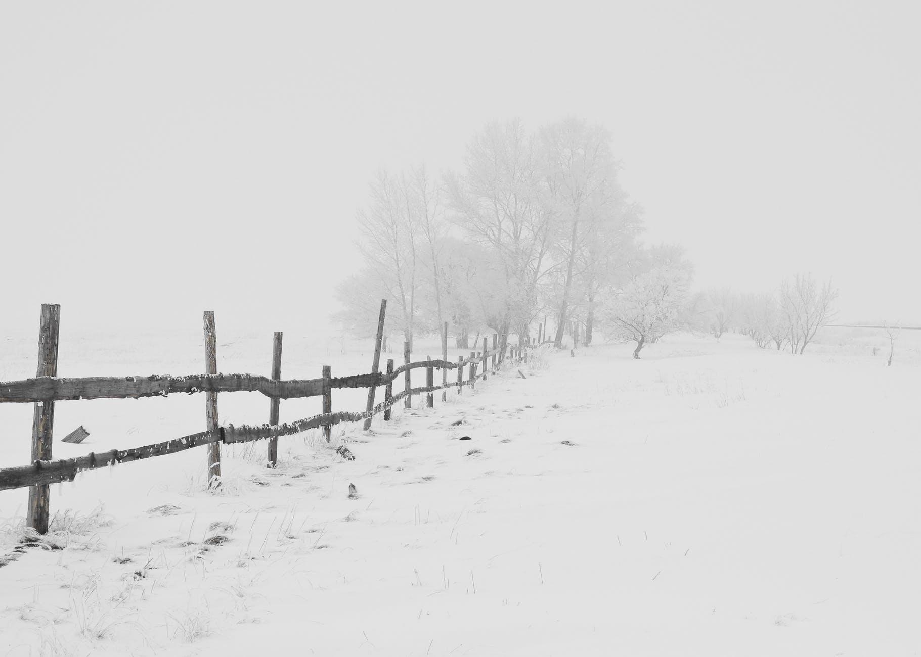 Care a fost cea mai grea iarnă din istoria Bucureștiului?