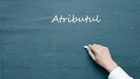 Ce este atributul? Ce determină atributul? La ce întrebări răspunde atributul?