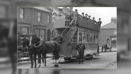 Cum se asigurau bucureștenii că animalele care trăgeau tramvaiele nu plecau după femele?