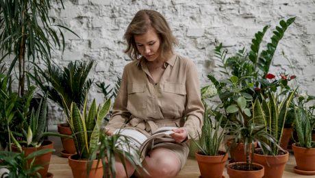 Curiozități despre plante. De ce ne dau lacrimile când tăiem ceapă? Care este cea mai longevivă plantă?