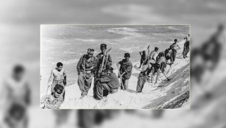 Cum erau torturați deținuții în lagărele de la canalul Dunăre-Marea Neagră?