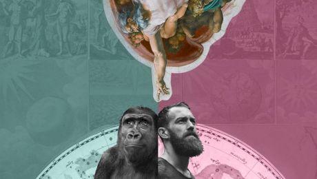 Ne tragem din maimuță sau ne-a creat Dumnezeu?