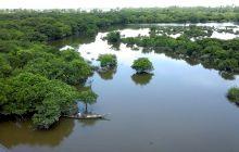 Care este cea mai mare deltă din lume? Unde se află aceasta?