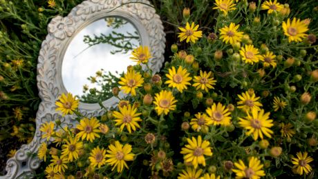 Cine a inventat oglinda? Care au fost primele oglinzi?