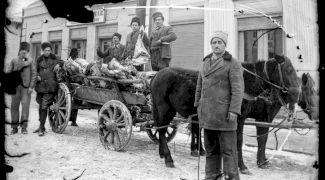 E adevărat că în perioada interbelică țăranii români dormeau cu animalele în casă?