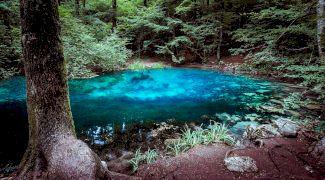 De ce nu îngheață niciodată apa din Lacul Ochiul Beiului?