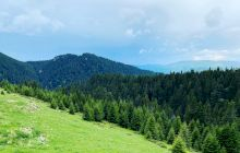 Curiozități despre Munții Carpați. Lucruri mai puțin știute despre Munții Carpați