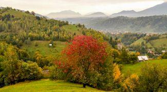 10 motive pentru care să îți faci vacanța în România